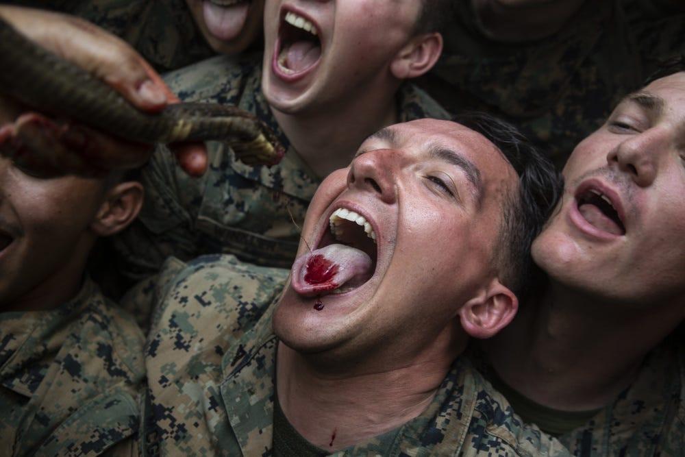 VIDEO. Pușcașii marini americani, somați să nu mai mănânce scorpioni și sânge de cobra, în junglă