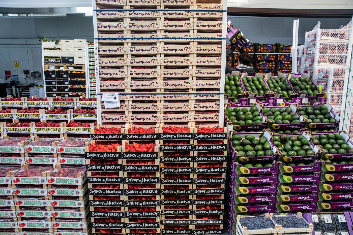 Statele încep să îşi facă stocuri de alimente pe măsură ce criza Covid se agravează