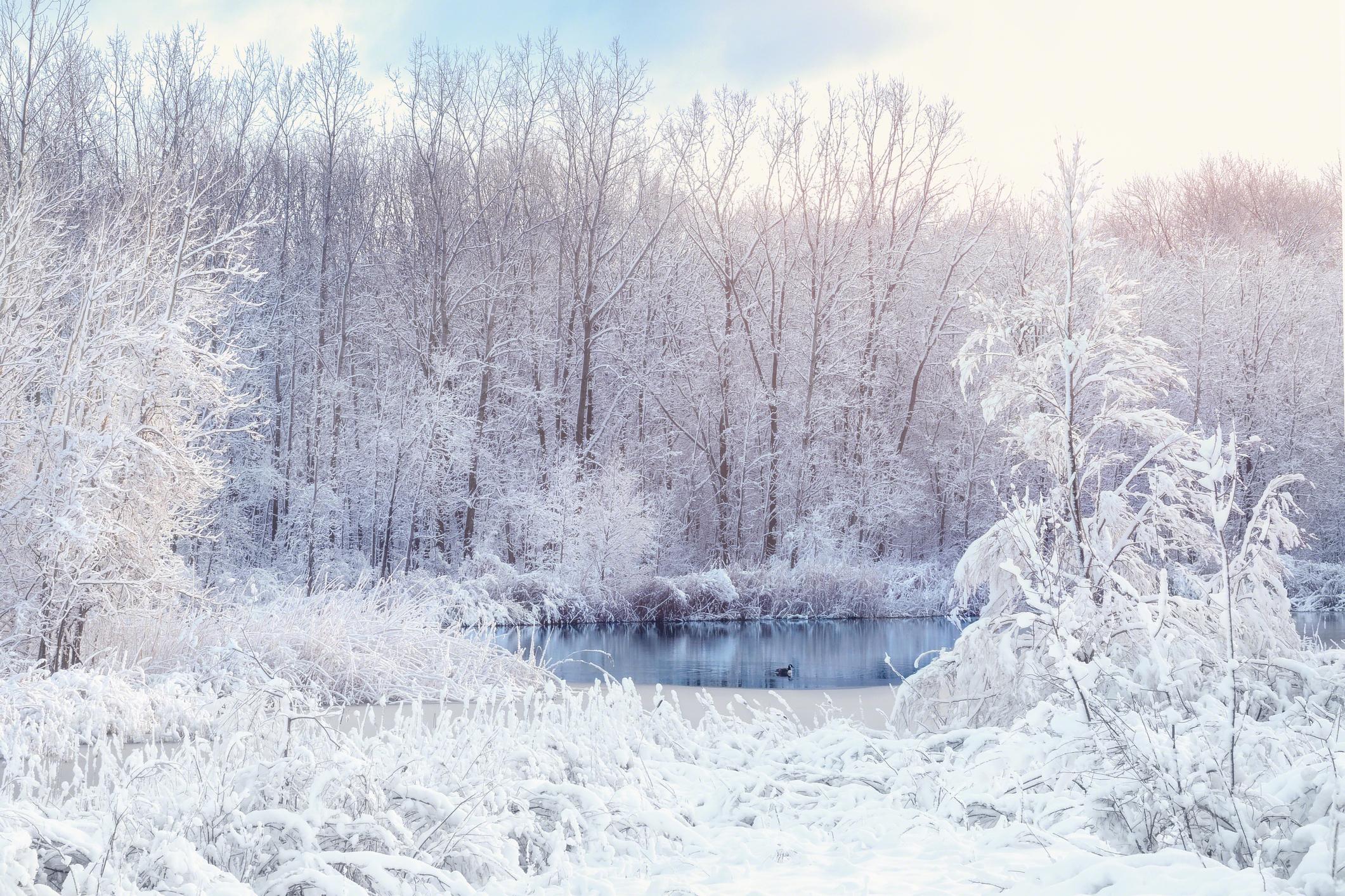 Prognoza meteo 8 decembrie. Zonele în care va ninge viscolit