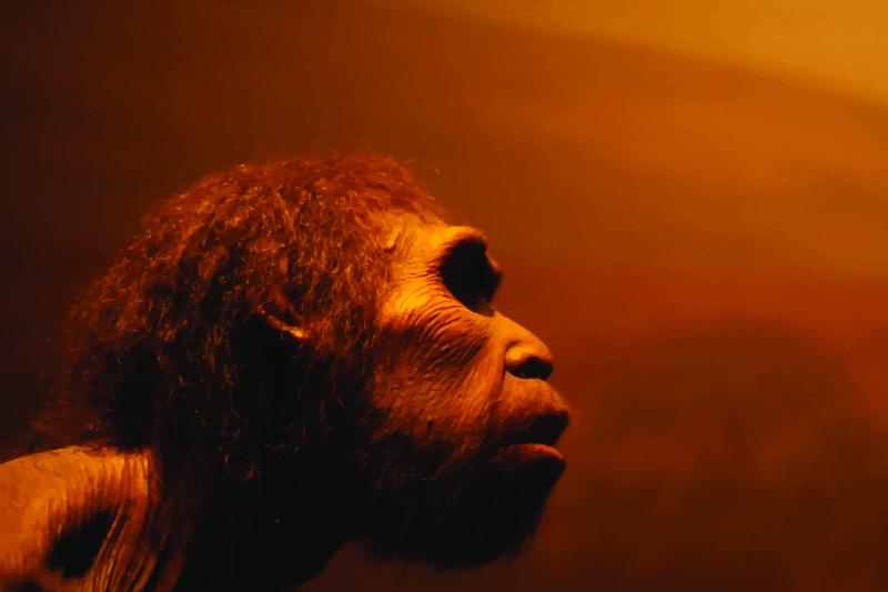 O nouă teorie a evoluției: Cum a devenit omul cea mai inteligentă specie de pe Pământ