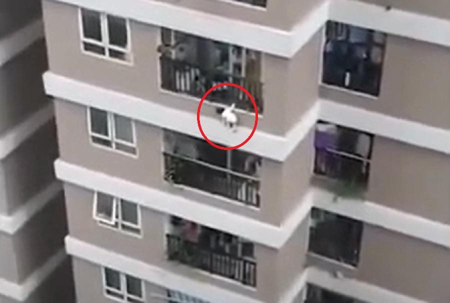 VIDEO. O fetiță de doi ani a căzut de la etajul 12 al unui bloc. Micuța a fost salvată de un curier