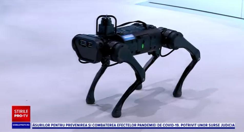 iLikeIT. Nero, primul câine robot din România. Ce poate să facă și cât costă