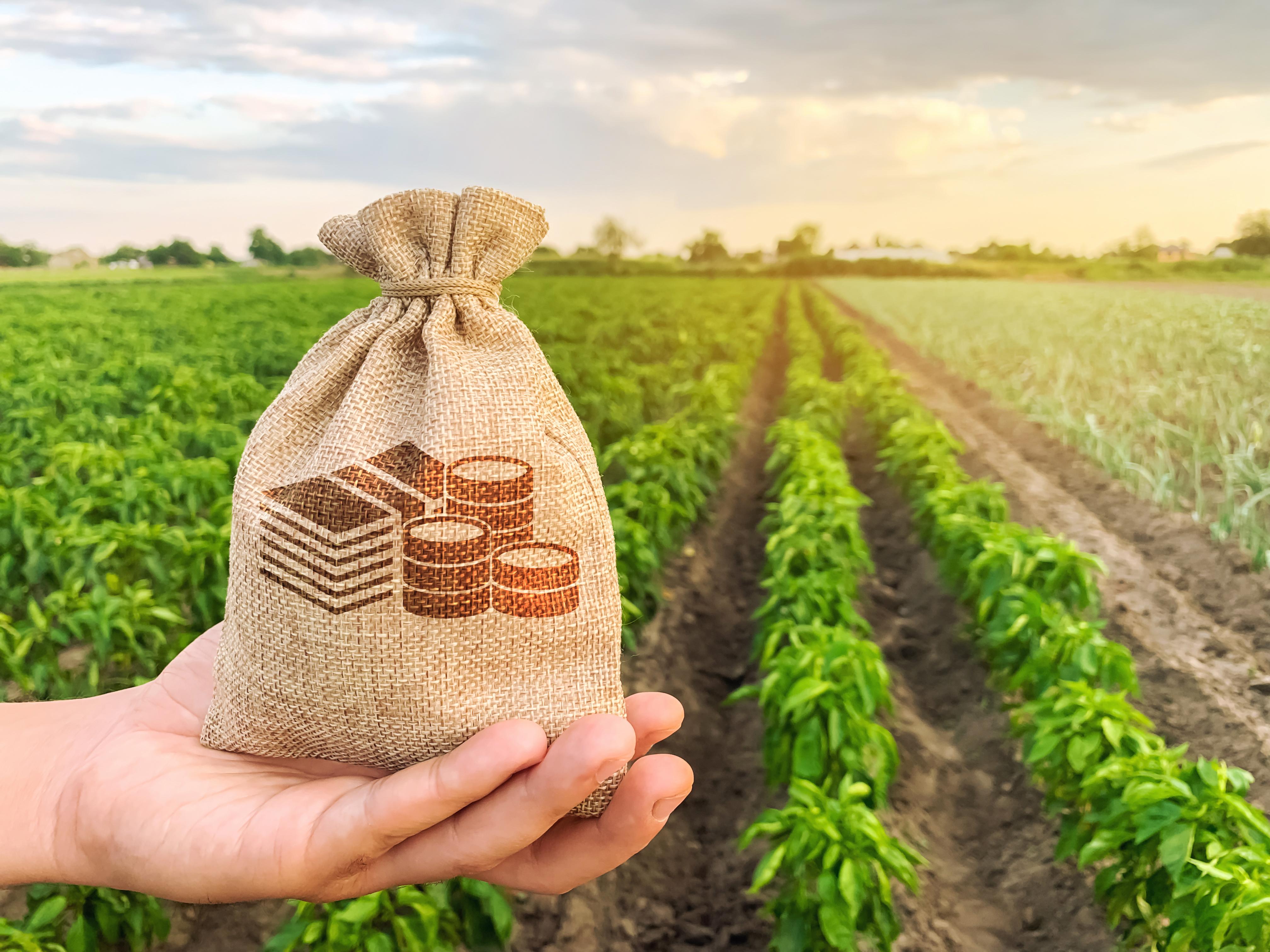 (P) Companiile se adaptează noilor reguli. Agricover Credit IFN SA povestește experiența sa cu soluția Paperless flowSIGN