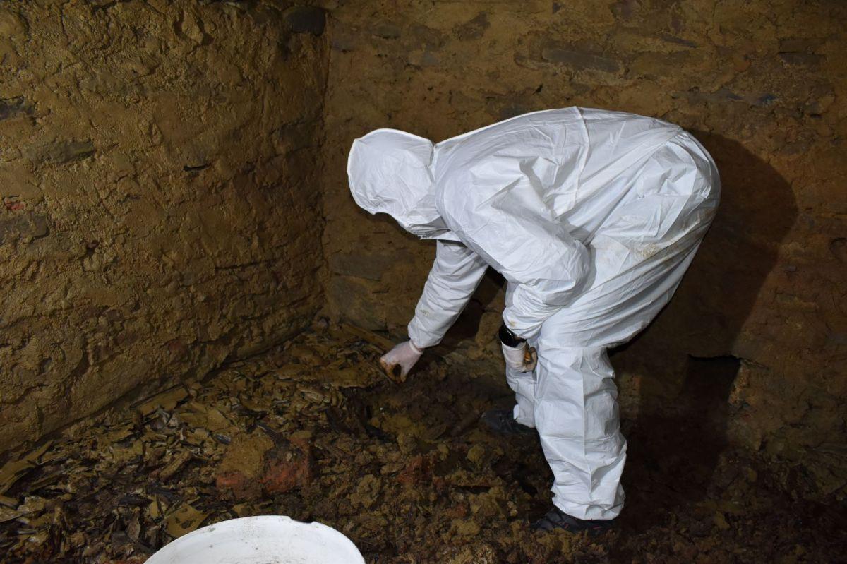 FOTO. Descoperirea făcută de arheologi într-o criptă din interiorul Bisericii reformate din Fântânele