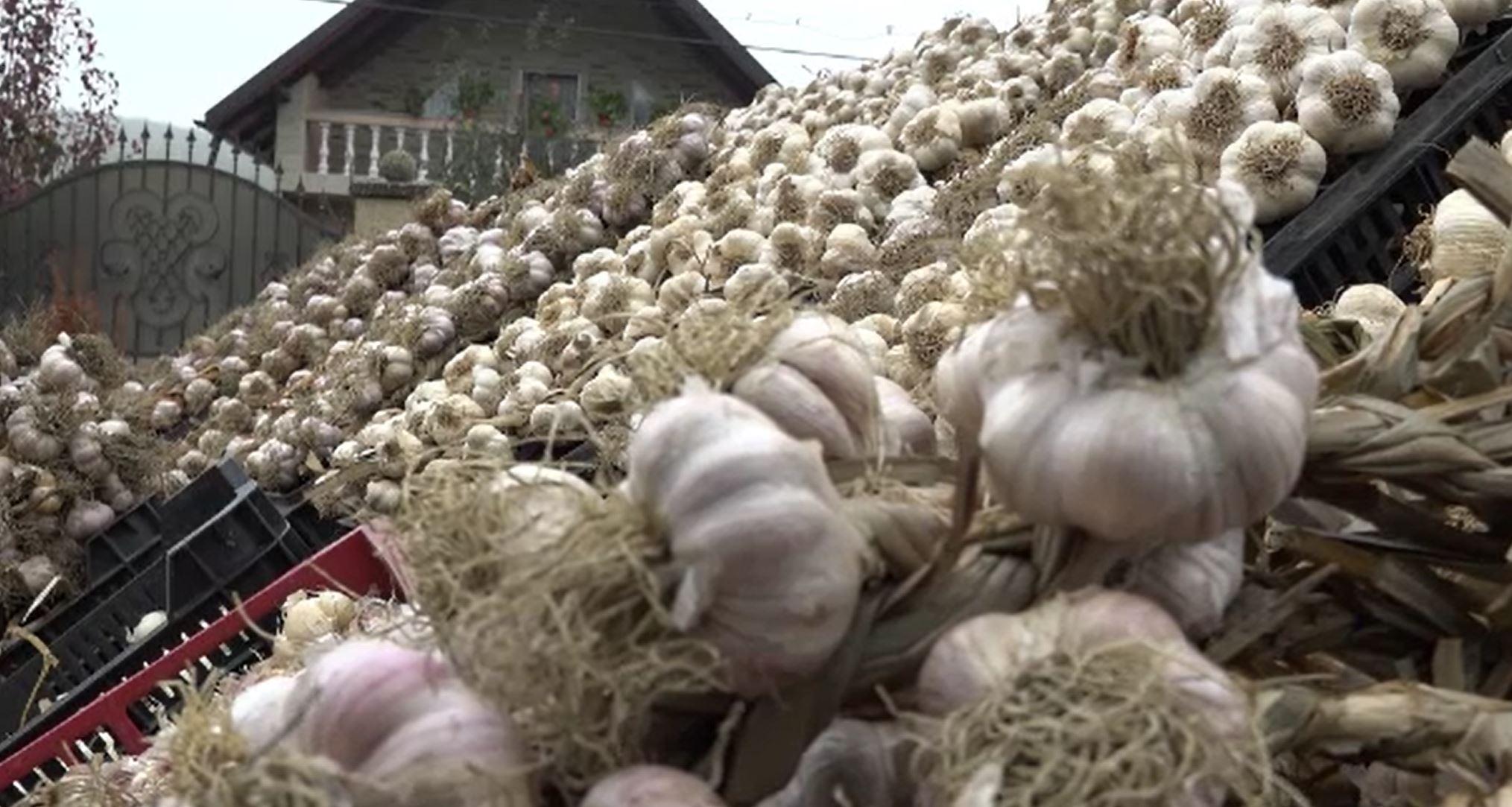 Fonduri importante alocate de stat fermierilor români. Cum pot fi folosiți banii