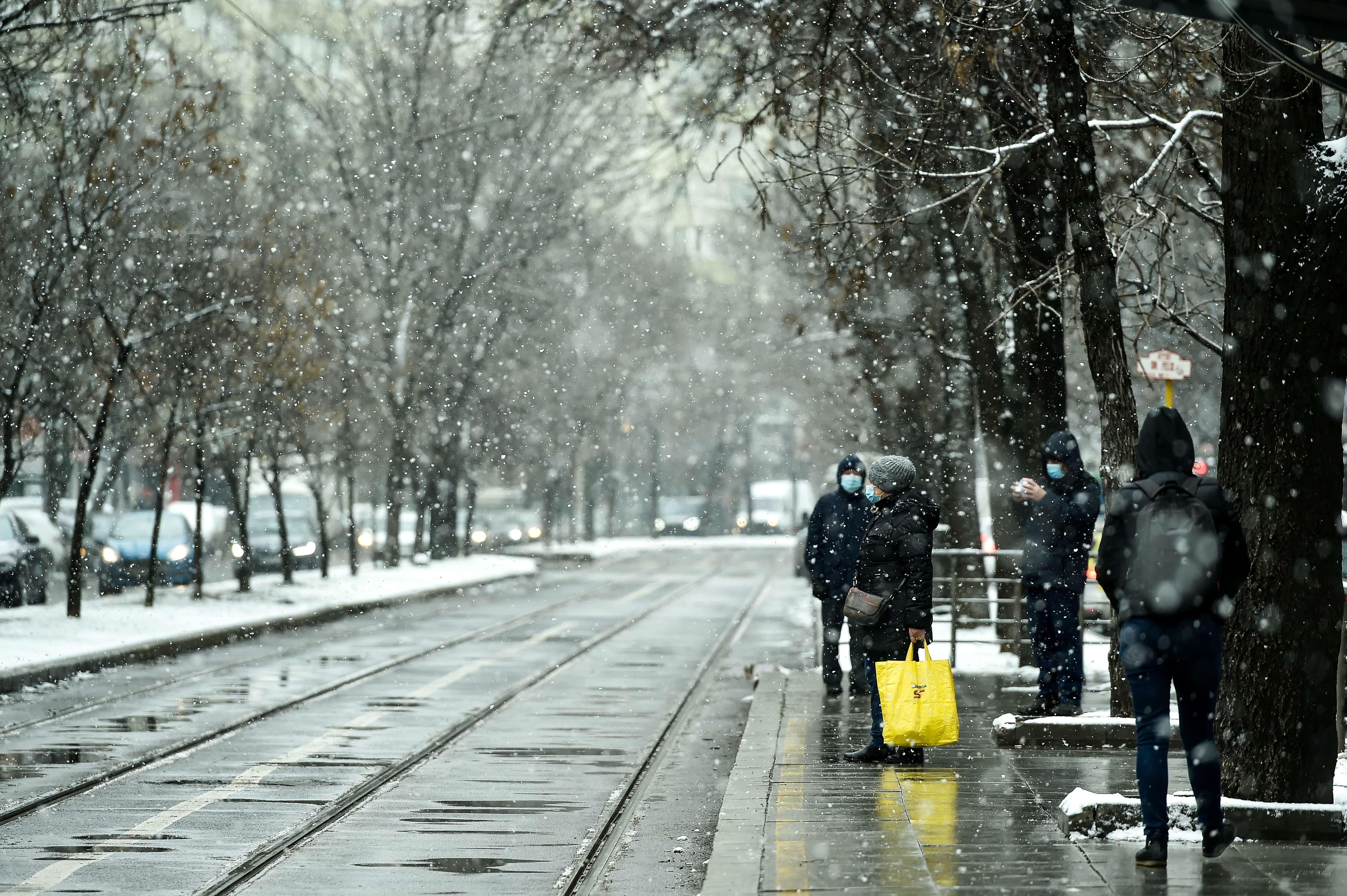 Nu scăpăm de iarna întârziată: Frig și temperaturi negative în toată țara. Zonele în care vor fi ninsori