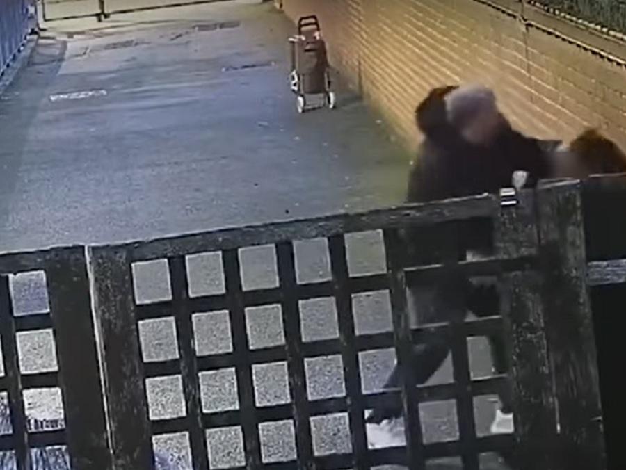 VIDEO. Atac înfiorător în Londra. O tânără însărcinată, lovită fără milă cu pumnii în stomac