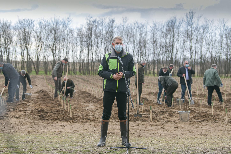 """Iohannis, de Ziua Pământului: """"Avem, practic, în toate orașele mari din România, deficit de zonă verde"""""""