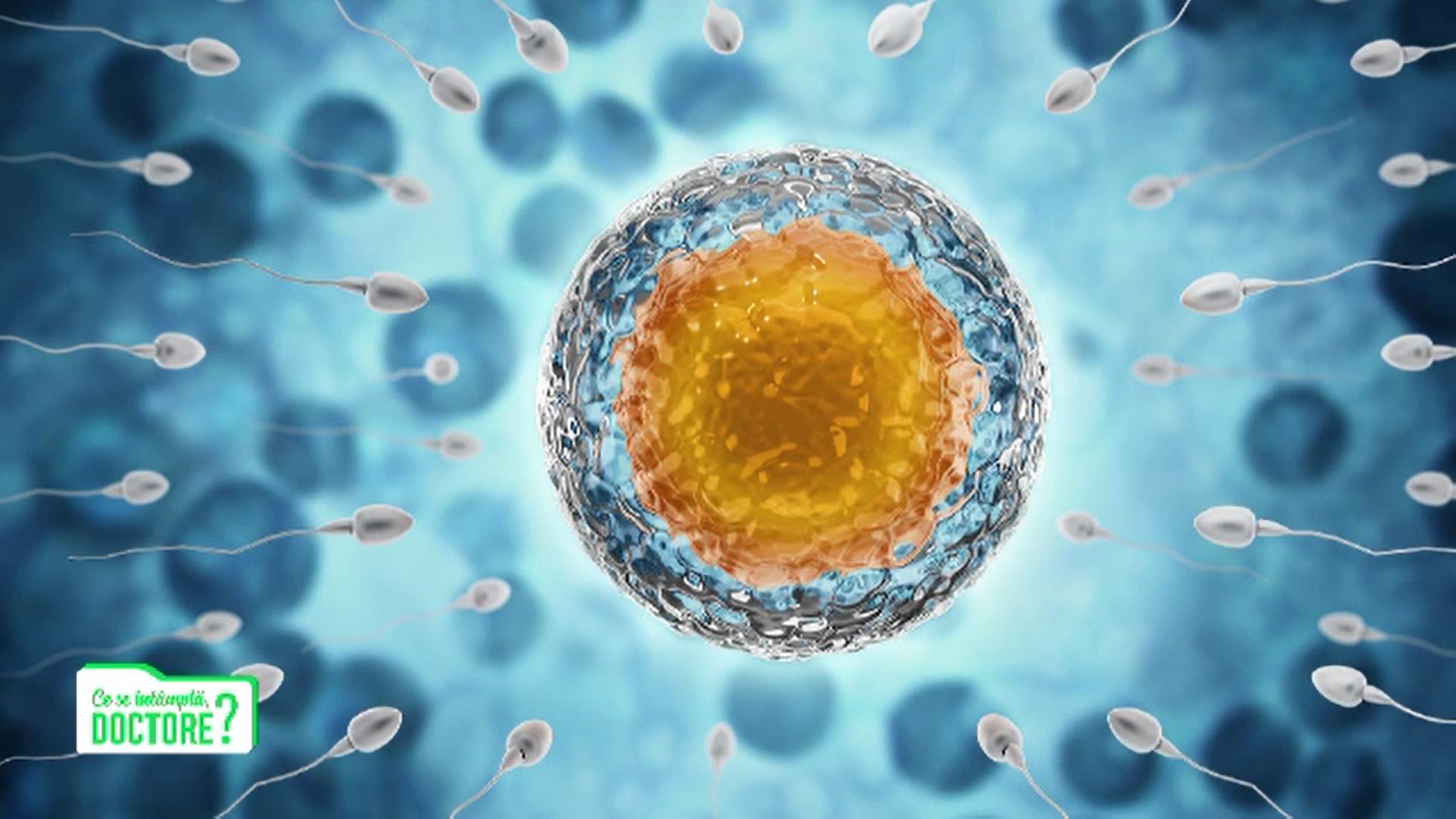 Cum apare cel mai des infertilitatea de cauză masculină