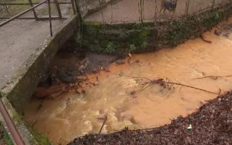 Minele parasite din Maramures care otravesc apele si solul. Raurile sunt rosii si nimic nu creste