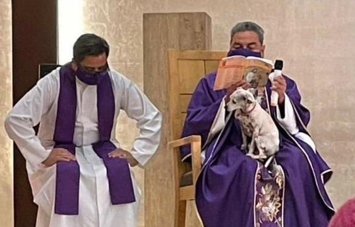 Un preot a ținut Sfânta Liturghie cu un câine în brațe.