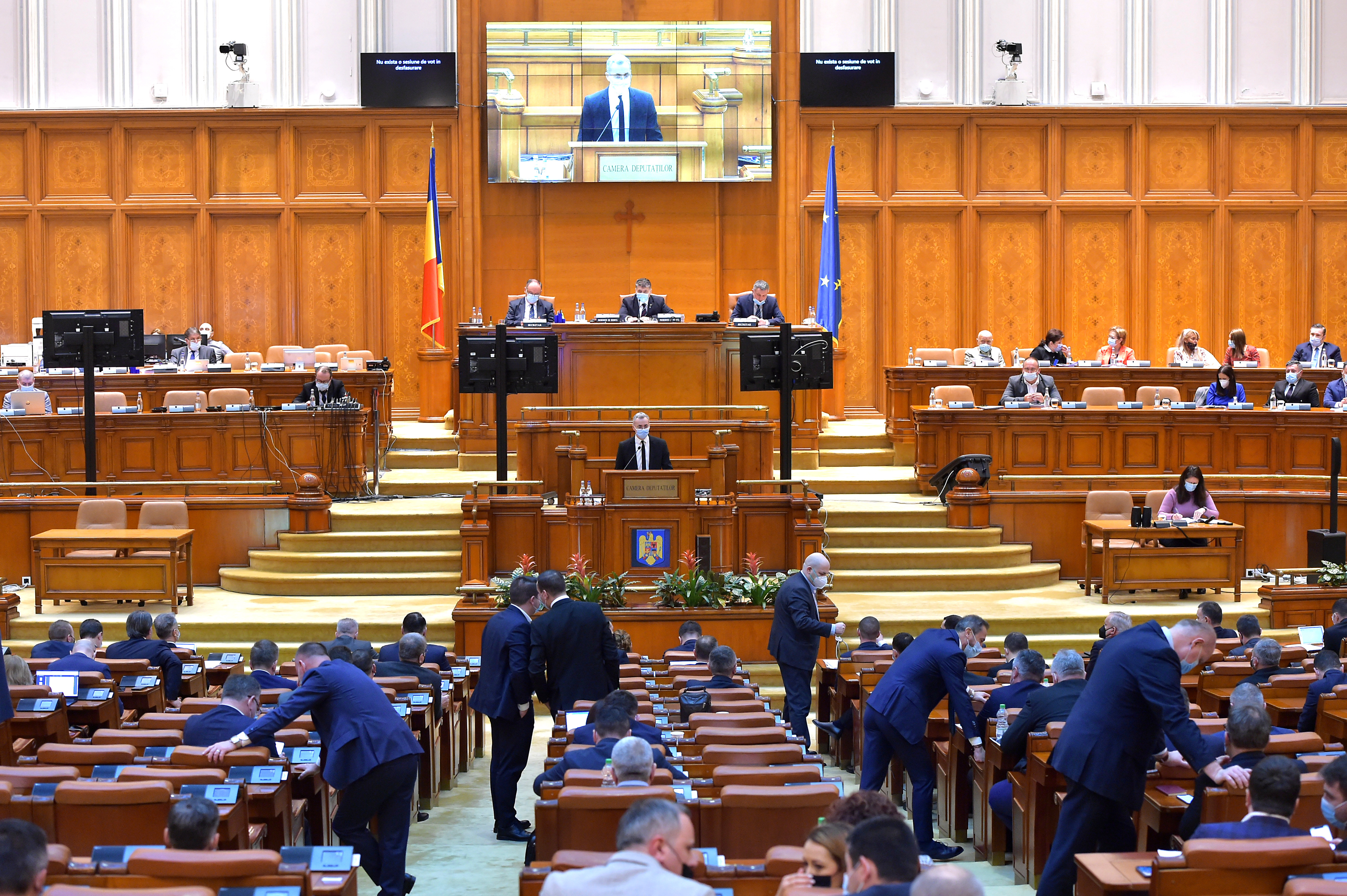 Încă un eșec pentru PSD. Moțiunea simplă împotriva ministrului Agriculturii a fost respinsă