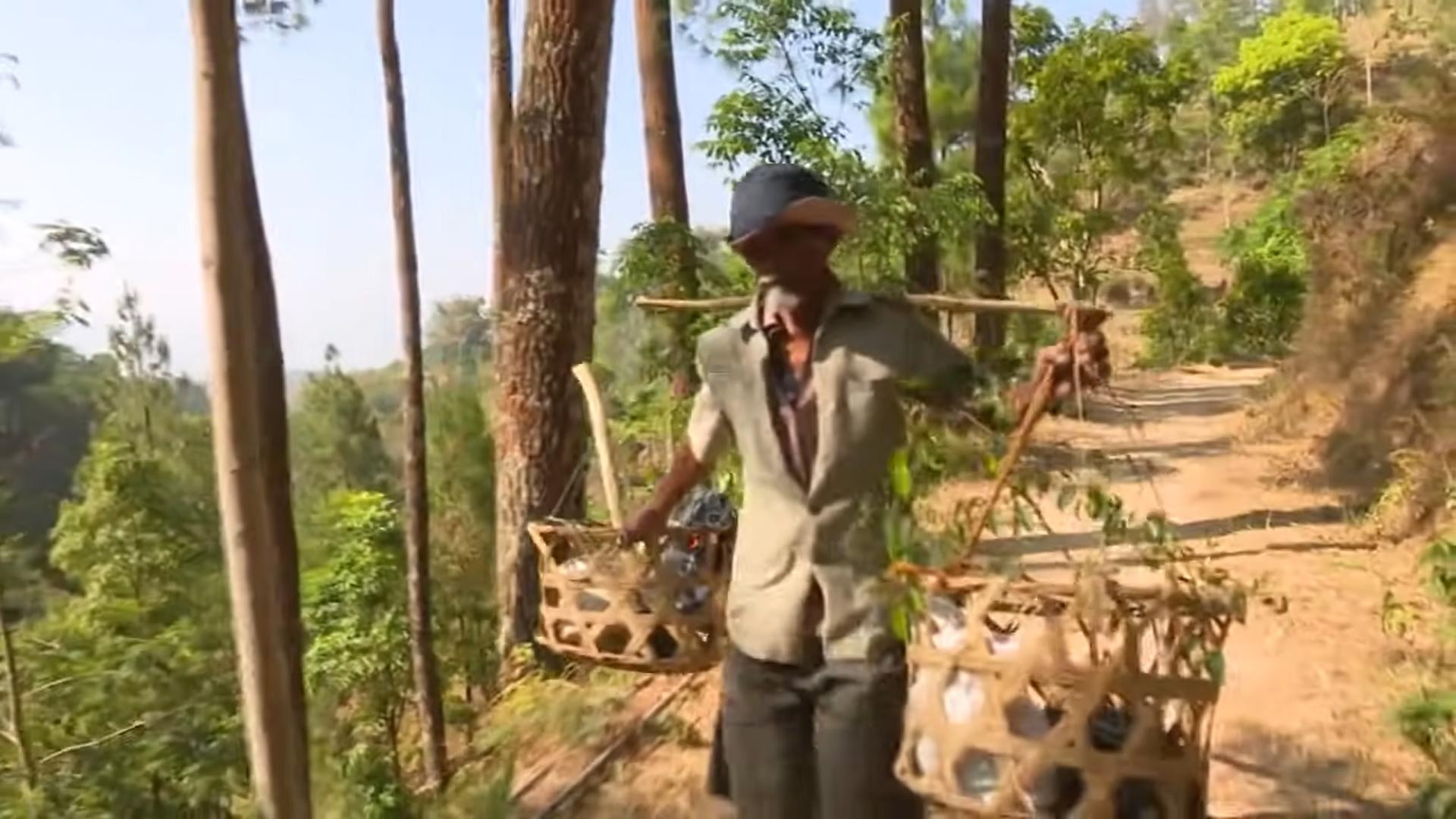 Un bărbat a plantat de unul singur o pădure întreagă. Sătenii îl credeau nebun, dar după 24 de ani au scăpat de secetă