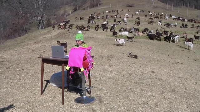 """O fetiță din Italia face școală online de pe munte, din mijlocul caprelor. """"Ești norocoasă"""""""