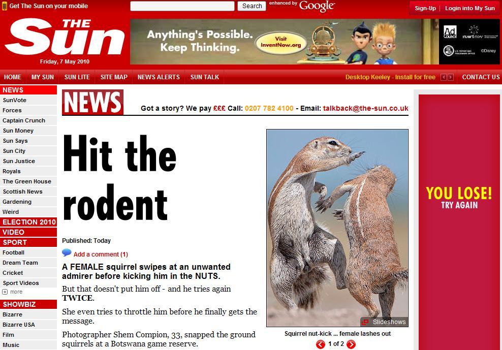 Nu-i de gluma cu veveritele! Si-a lovit admiratorul in testicule!