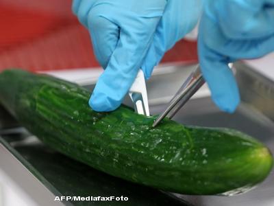 Isteria castravetilor cu E-coli. Legumele din Romania, Turcia si Bulgaria sunt sigure