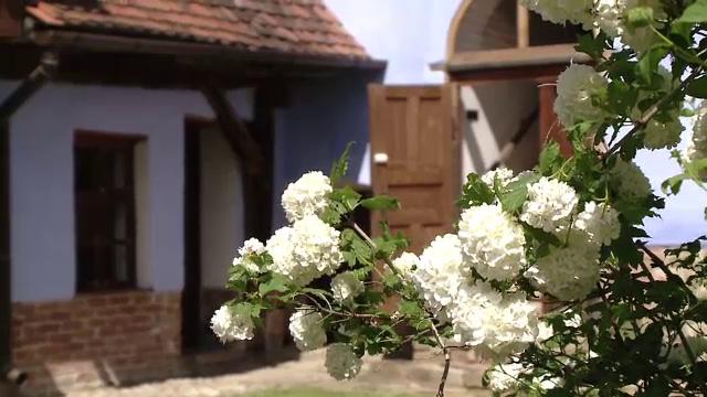 Povestea de succes a satului Viscri. Localnicii își permit vacanțe în străinătate