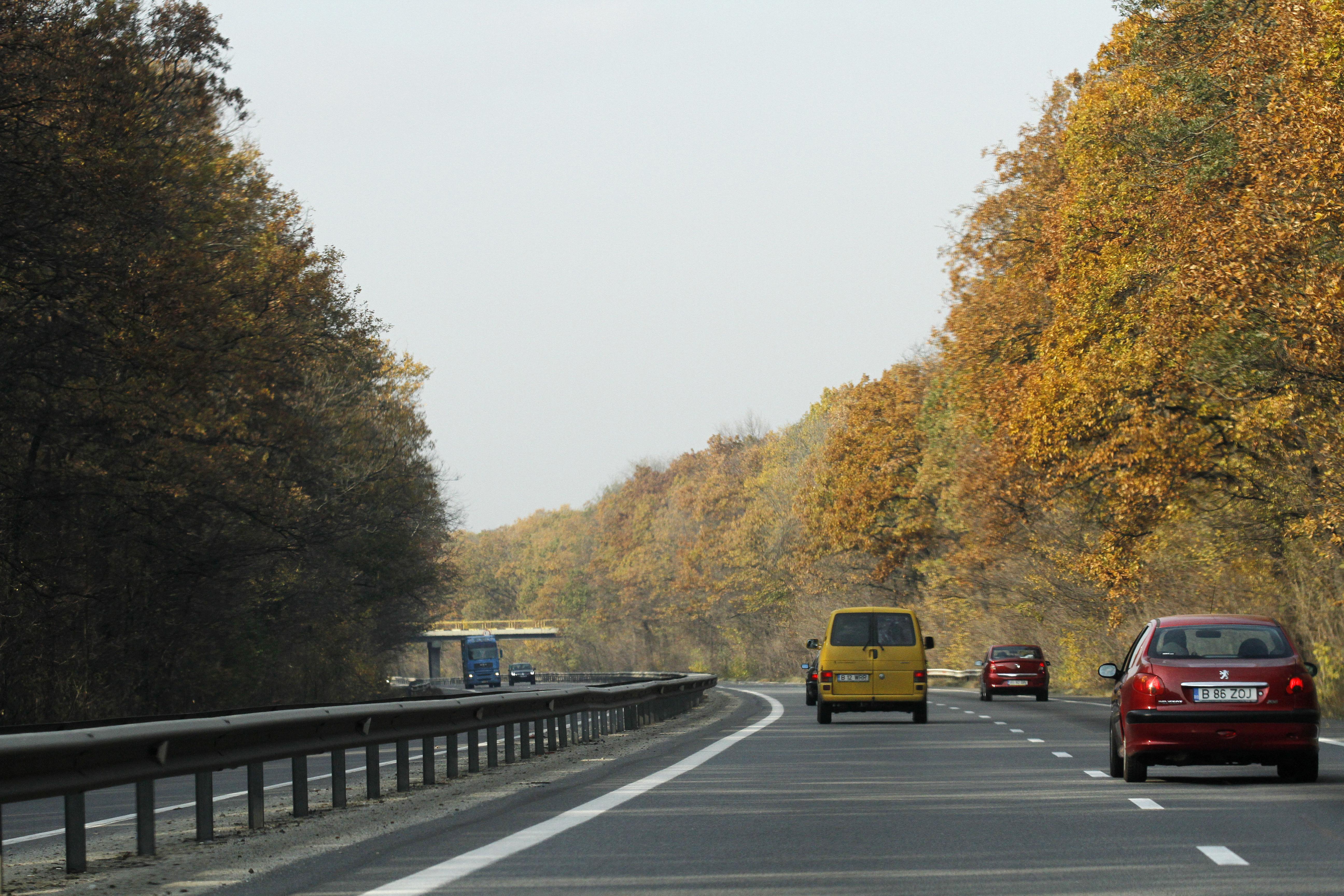 Incendiu de vegetatie pe A1. Circulatia se desfasoara cu greutate pe sensul Bucuresti - Pitesti