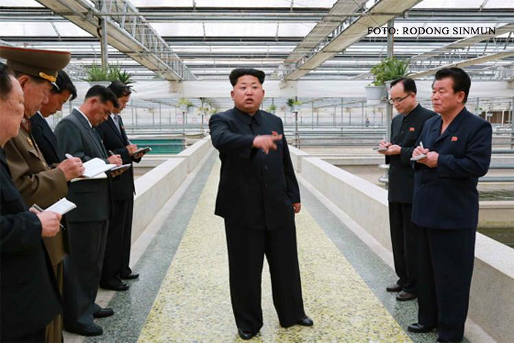 Kim Jong-un, furios dupa ce a vizitat o ferma de testoase care NU crestea si homari.