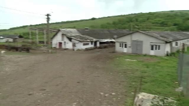 Gestul extrem al unui tanar din judetul Cluj. O acuzatie pe nedrept l-ar fi impins sa-si puna capat zilelor