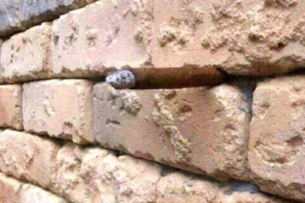 O noua iluzie optica a pus pe jar internetul. Iti dai seama ce apare intre caramizile acestui zid?