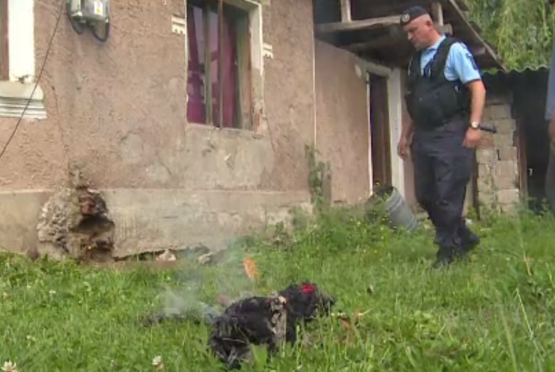 Un barbat din Gorj a chemat de urgenta pompierii sa scoata un sarpe ascuns in casa lui. Ce a urmat