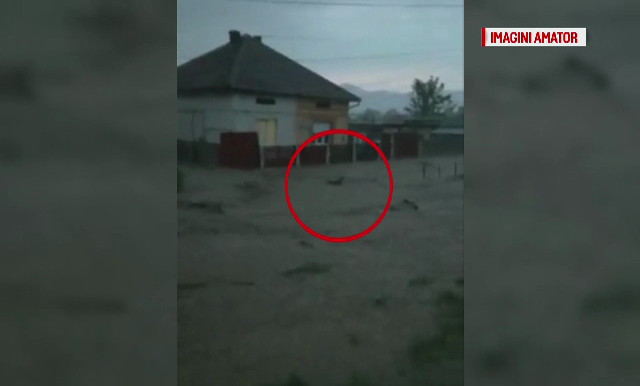 Furtuna a facut prapad in Caras-Severin. 80 de gospodarii au fost inundate, o femeie a ramas captiva in casa