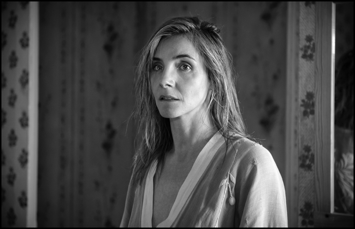 Armand Assante, printesa Clotilde Courau si nume mari ale filmului romanesc, printre invitatii TIFF