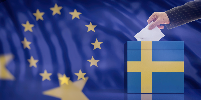 Alegeri europarlamentare și referendum. Numărul total de alegători așteptați la vot este de 18.968.840 de persoane