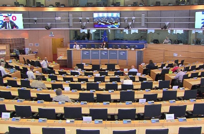 Cazul românilor plecați la cules de sparanghel a ajuns în Parlamentul European