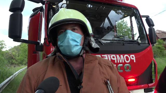 Misiune dificilă în Mureș. Un pui de urs a fost salvat cu ajutorul pompierilor
