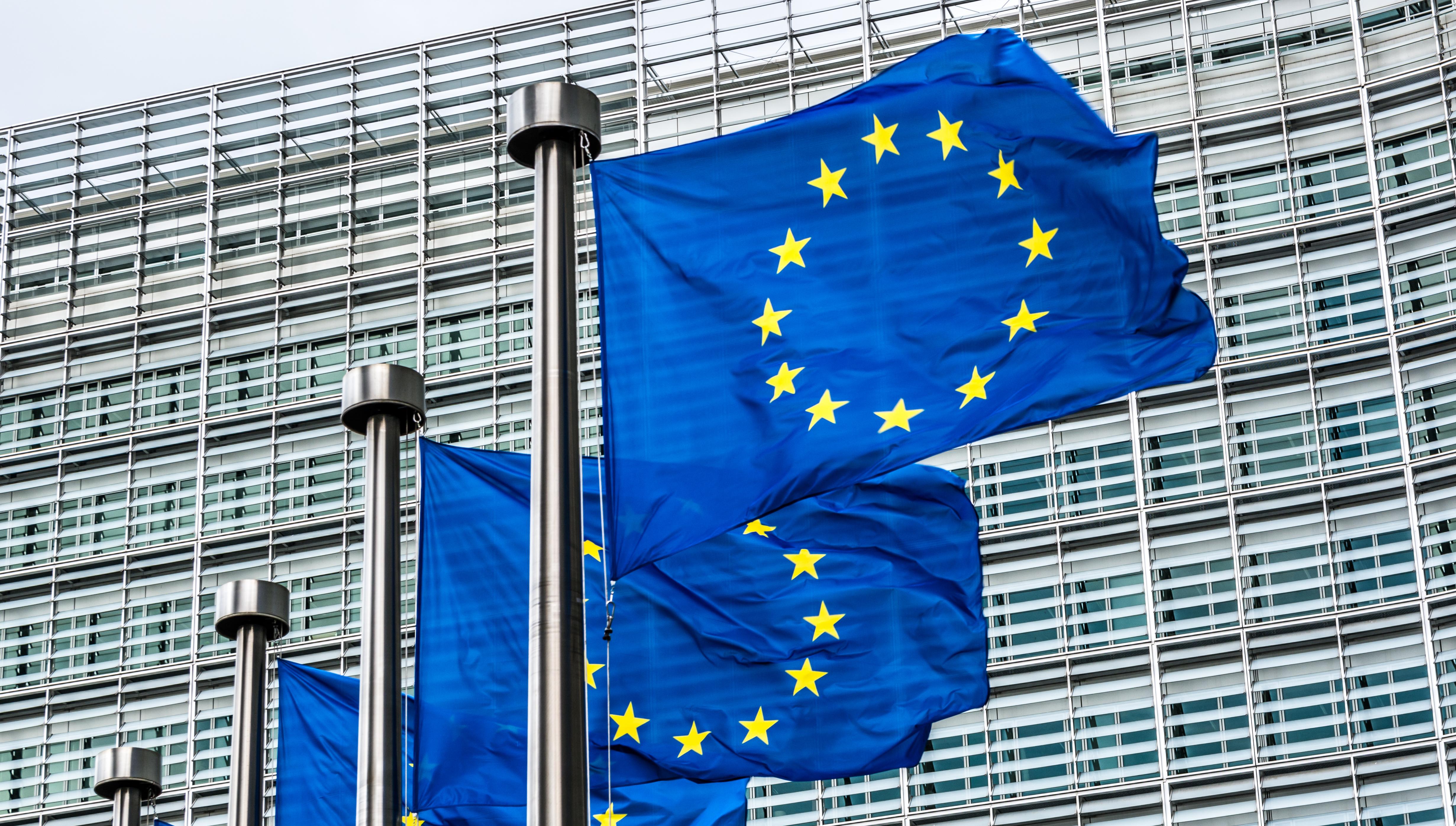 Miniştrii de Externe din UE, cu excepţia Ungariei, cer un armistiţiu între Israel şi Hamas