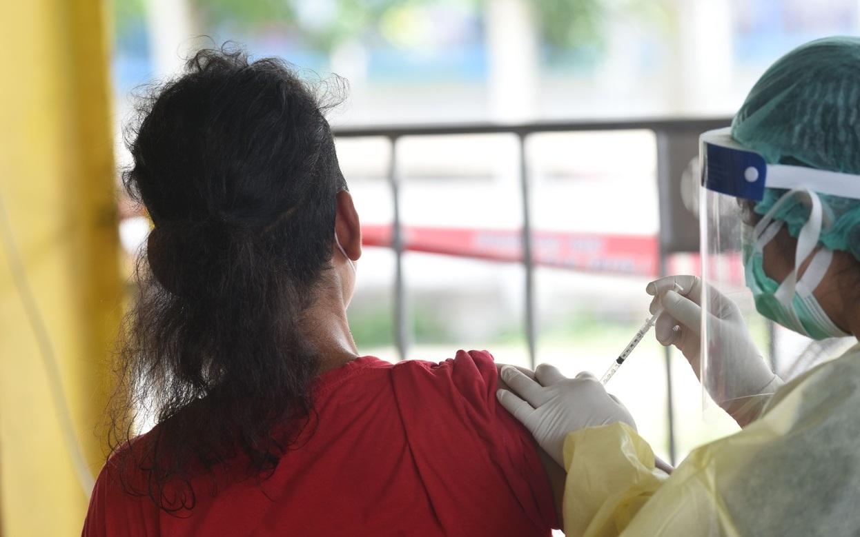Thailanda: Persoanele care se vaccinează împotriva Covid-19 pot câștiga o vacă