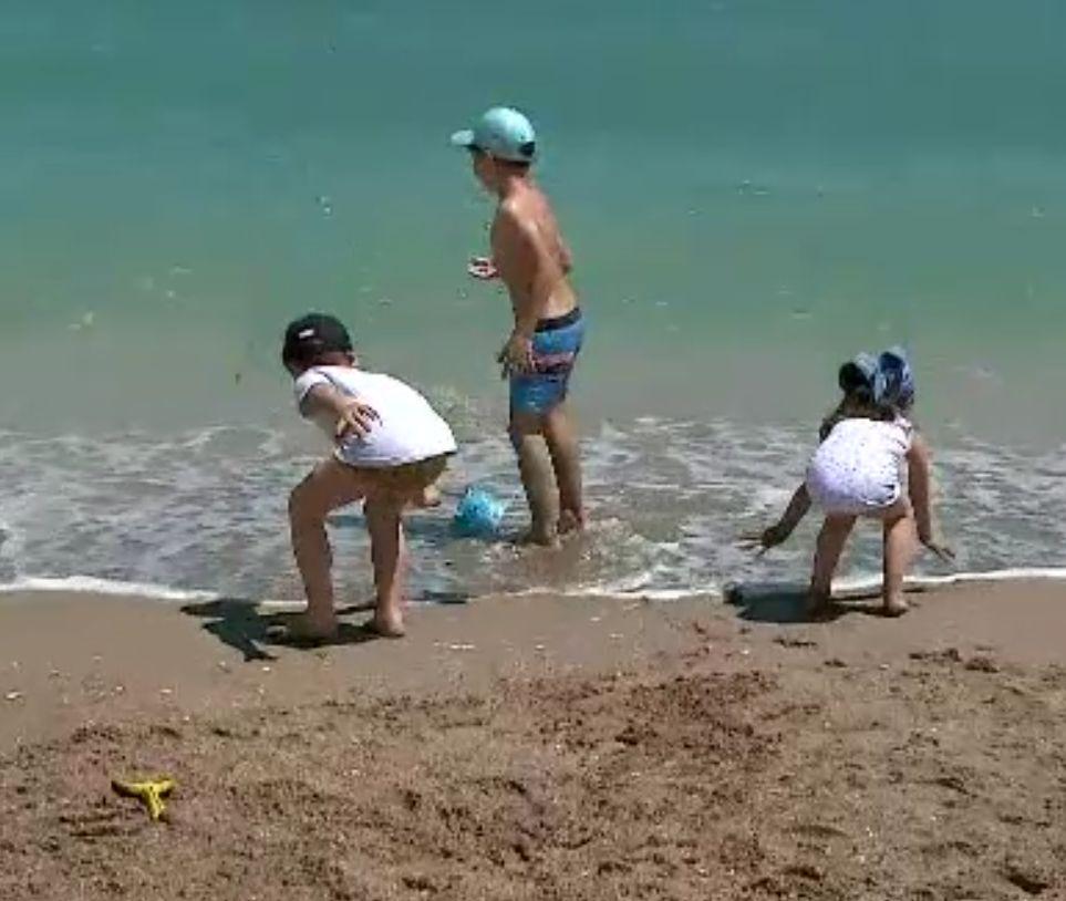 Delfinii au apărut în valurile din Vama Veche. În staţiune vin tot mai multe familii cu copii