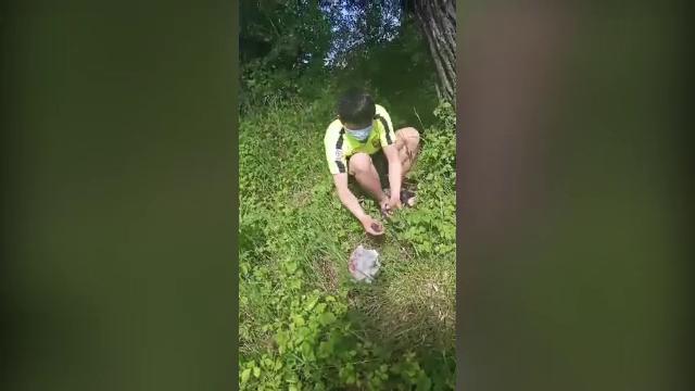 VIDEO. Vietnamezi surprinși în timp ce căutau pui de sturz ca să îi mănânce, într-o rezervație din Neamț