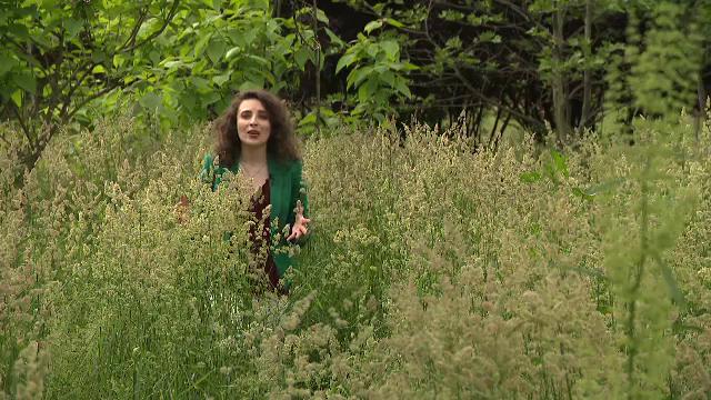 Parcurile neîngrijite din București au devenit un pericol. Iarba este aproape cât un om