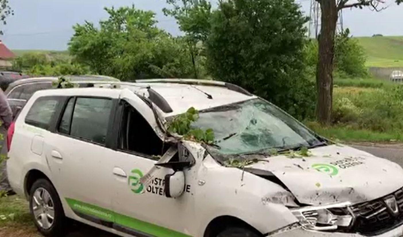 Bărbat din Dolj, la un pas de moarte după ce i-a căzut un copac pe mașină în timp ce era în trafic