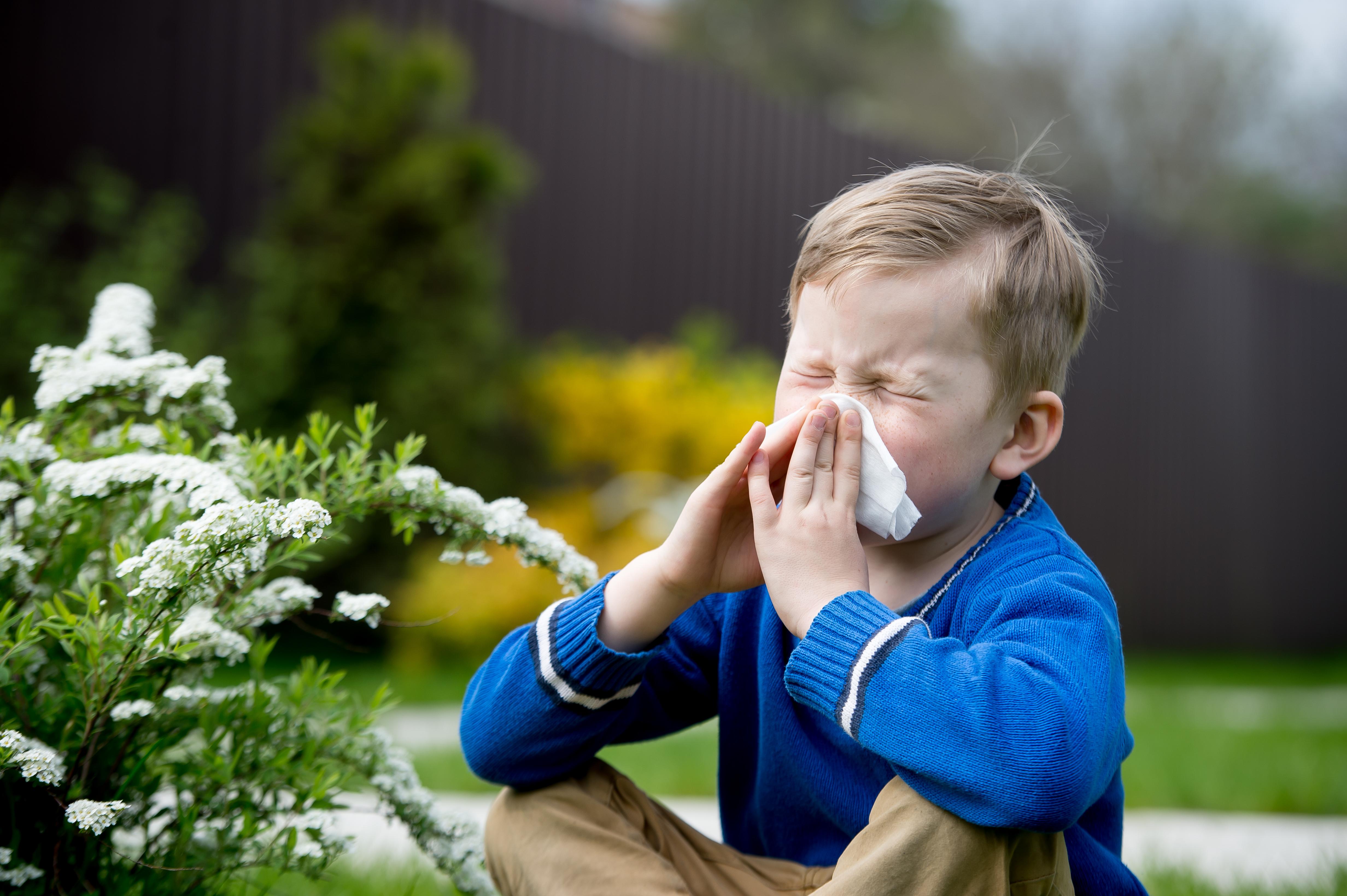 CSID. Cum putem proteja copiii de alergii. Mânuțe murdare sau un câine, cele mai bune variante