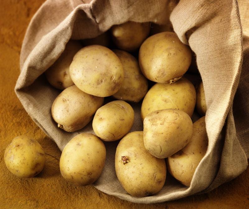 Tabara despre cresterea pretului la cartof: Rezultat al importului fara cap
