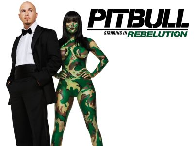 Rapperul Pitbull, victima unei farse pe internet. Cum il poti pedepsi si tu dupa ce a jignit Romania