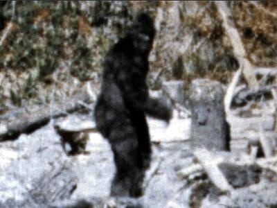 Bigfoot, filmat in toate colturile lumii. Dovezile ca monstrul exista. VIDEO