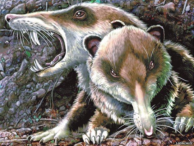 Veverita simpatica din Ice Age a trait si in viata reala, acum 93 de milioane de ani