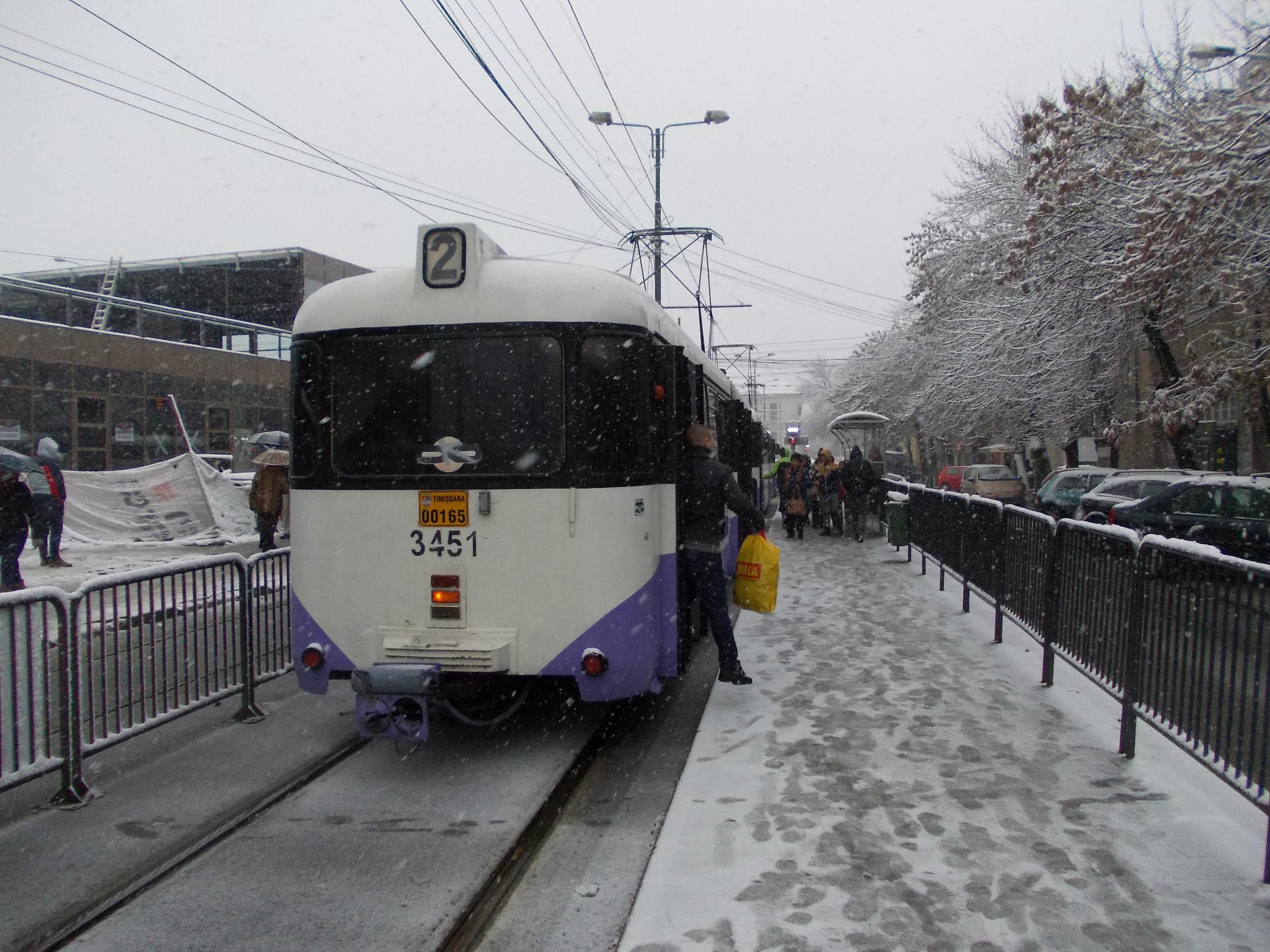 In decembrie, calatoriile cu mijloacele de transport in comun ar putea fi gratuite, la Timisoara
