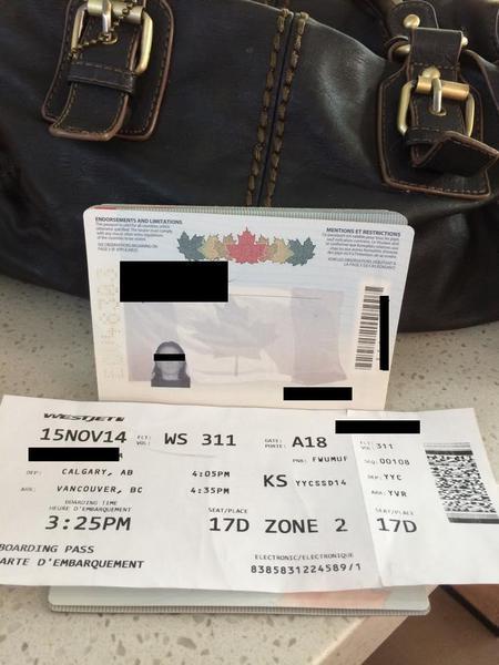 ALEGERI PREZIDENTIALE 2014 IN DIASPORA. O romanca din Canada zboara cu avionul 670 de km pentru a putea vota