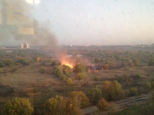 Incendiu de vegetatie in Parcul National Vacaresti. Doua masini de pompieri au fost trimise la fata locului. FOTO