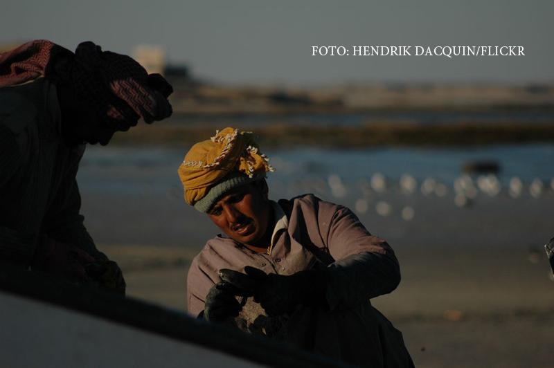 Captura dezgustatoare care va transforma trei pescari saraci in milionari.