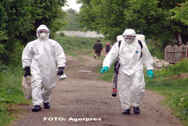 Alerta in Romania. A fost gasita o lebada moarta, iar analizele au confirmat ca este vorba de un caz de gripa aviara
