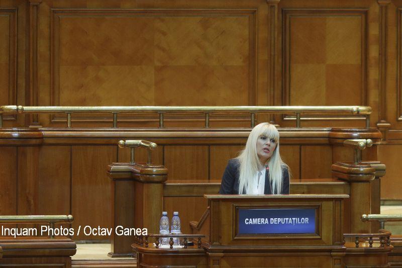 Elena Udrea susține că