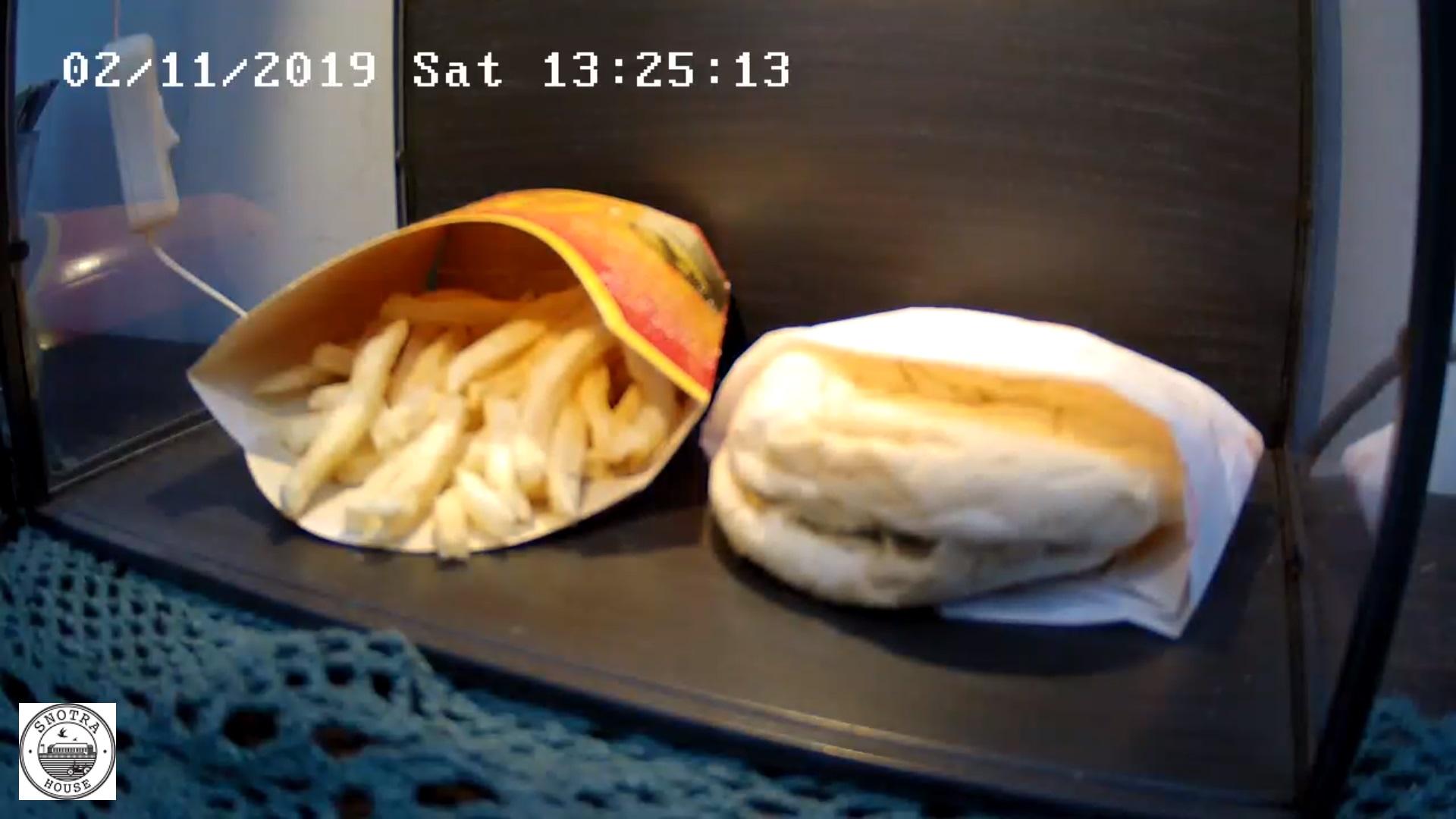 Cum arată un hamburger vechi de 10 ani. Imaginile au fost transmise LIVE