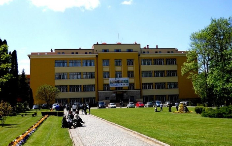 Spargere ca în filme, la o universitate din România. Unde au fost prinşi hoţii, după o lună